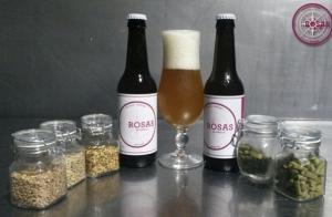 Visita a la fábrica de cerveza artesana con degustación y muestra